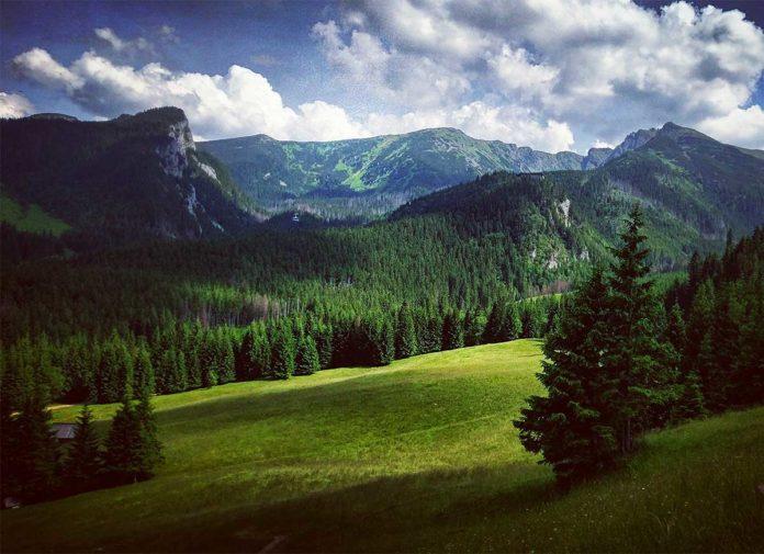 Kasprowy Wierch - widok z Kalatówek