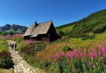 Tatry - szlaki tatrzańskie