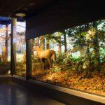 Centrum Edukacji Przyrodniczej, foto TPN