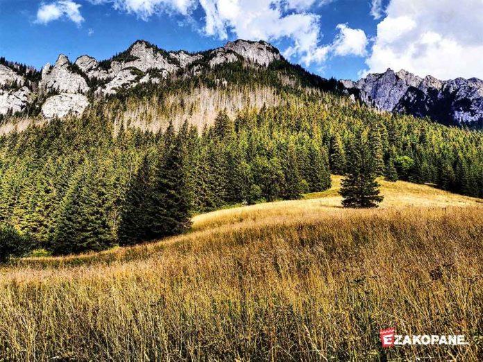 Jesień w Tarach, szlak Doliną Kościeliską