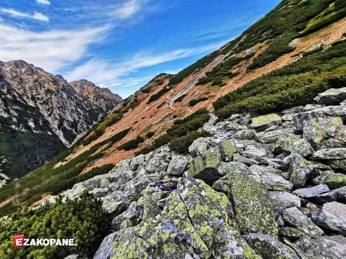 Szlak w Tatrach, Dolina Pięciu Stawów Polskich