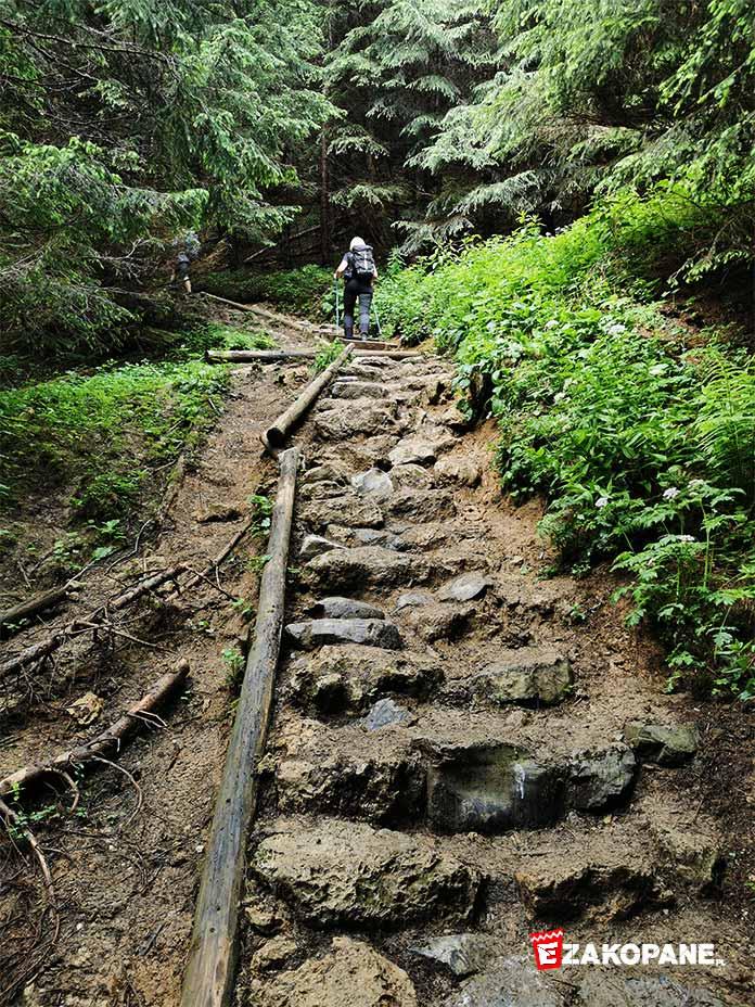 Warunki w Tatrach, mokre i błotniste